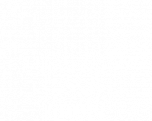 JUPITER FLAG
